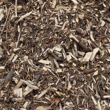 logging-residue_375px